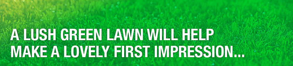 Lush Lawn Pull Quote